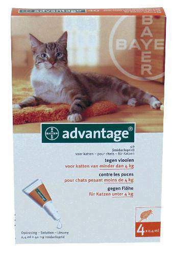 BAYER ADVANTAGE KAT 4 PIPETTEN #95;_40 TOT 4 KG